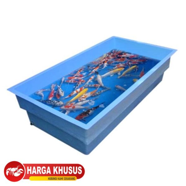 Bak Ikan Kotak